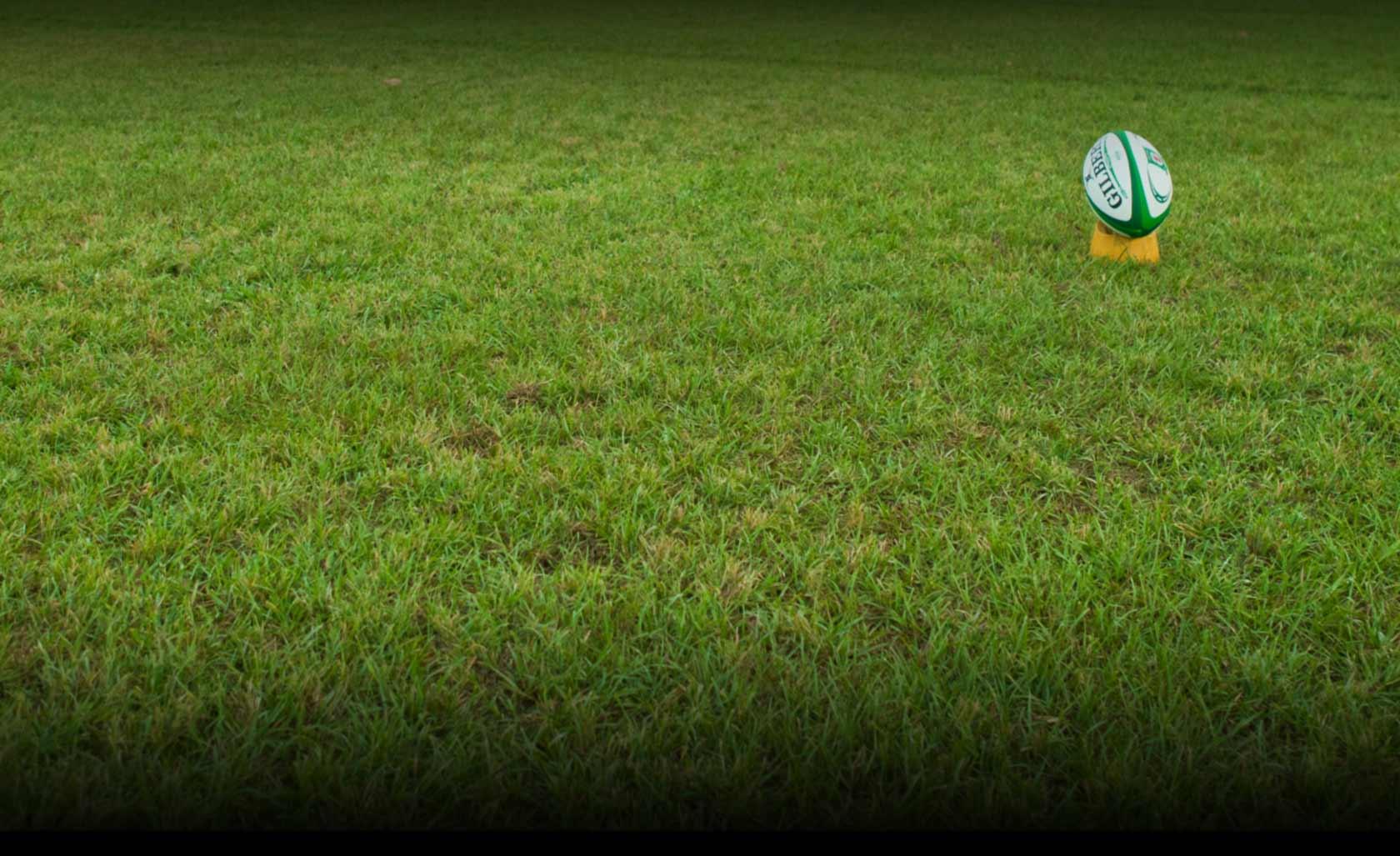 site_bg-grass
